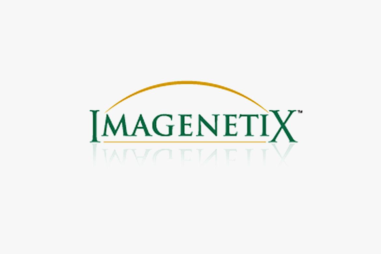 Imagenetix